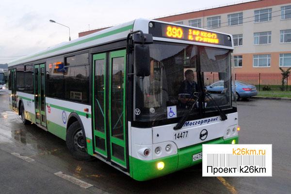 Начали курсировать автобусы
