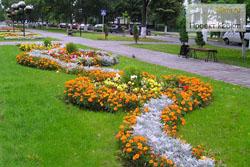 flowers-1s.jpg