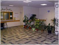 День здорового ребенка в детской поликлиники города Московский